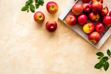 Ripe Red Apples With Leaves - ...