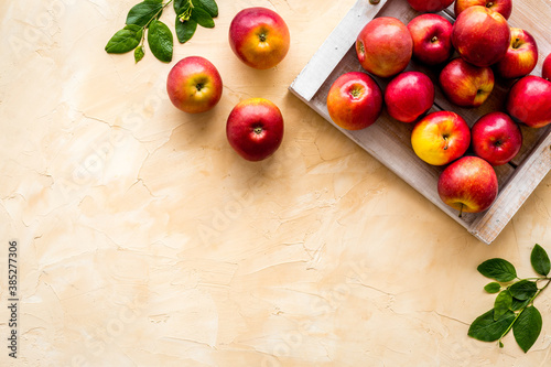 Obraz Ripe red apples with leaves - top view, copy space - fototapety do salonu
