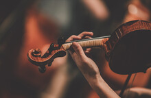 Close Frame For The Hand Of A Violinist Of A Symphony Orchestra.