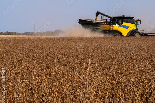 Fototapeta A farmer using a combine to harvest soy beans obraz