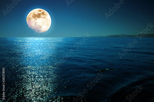 Full moon with reflections on a calm sea at midnight. Canvas