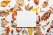 canvas print picture Beautiful autumn composition with empty card on white background