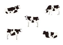 牛のイラスト セット
