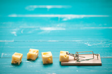 Mouse Trap And Cheese On Turquoise Table