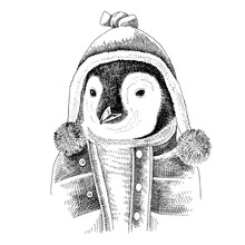 Hand Drawn Dressed Up Penguin In Hipster Style