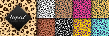 Vector Trendy Leopard Skin Seamless Pattern Set. Hand Drawn Wild Animal Cheetah Spots Abstract Texture For Fashion Print Design, Fabric, Textile, Cover, Wrapping Paper, Background, Wallpaper