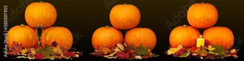 Obraz na plátně A trio of pumpkins against a black background