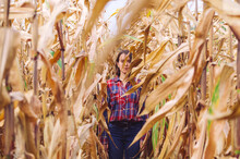 Woman In The Dried Corn Stalks...