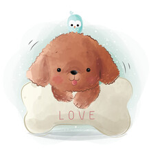 Cute Poodle With A Little Bird