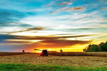 Corn Picker In The First Light Of Day As It Sits In A Corn Field.