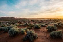 Desert Landscape Sunset