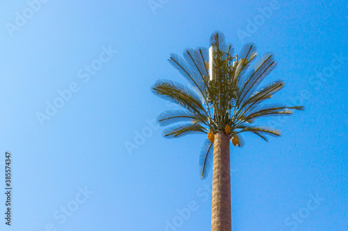 Canvas Print Base radio station or telecommunication tower disguised as a palm tree at Morocco