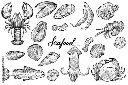 Fototapeta Seafood set, hand drawn vector obraz