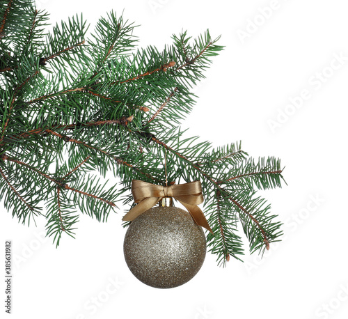 Golden shiny Christmas ball on fir tree branch against white background
