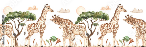 Giraffes in savannah with clouds, acacia, tropical leaves watercolor seamless border