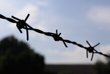Barbed Wire. Selectable Focus....