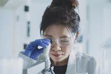 Female Scientist Looking At Mi...