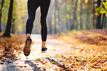 Young Woman Jogging In Autumn ...
