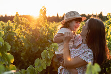 Mother And Little Daughter In A Vineyard At Sunset In Provence, France