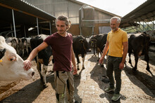 Mature Farmer With Adult Son A...