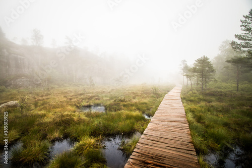 View of wooden walkway passing through marshy landscape during fog