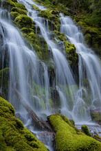 Scenic View Of Proxy Falls Cas...