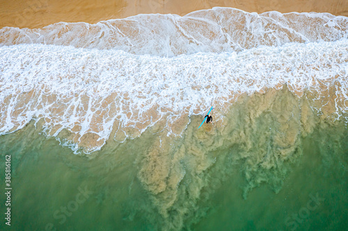 Fototapeta Aerial view of man with surfboard walking towards sea in Noosa National Park