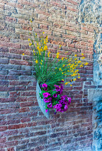 Flowers Hung On The Walls In P...