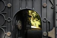 Forged Metal Door With Ornamen...