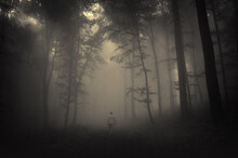 Spooky Landscape With A Man Walking In A Dark Forest