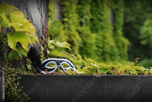 damska maska karnawałowa na schodach wśród drzew, trawy, bluszczu i winorośli