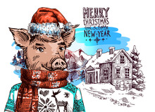Pig Dressed Illustration. Hand...