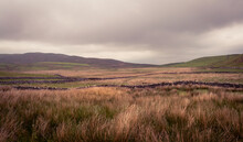 A Landscape From The Yorkshire...