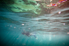 Male Snorkeler Just Below The ...