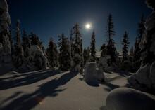 Moonlit Winter Night In Finnis...