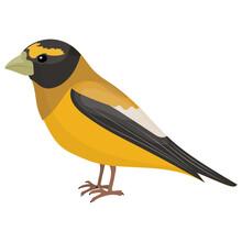 A Colorful Bird With Long Beak Depicting  Eurasian Finch