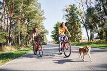 Couple With Dog And Bicycles