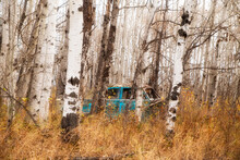 An Abandoned Turquoise Colored Four Door Car With Moss Growing On It In A Forest Of Bare Trees And Autumn Leaves