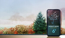 Rainy Day In Fall, Autumn And Winter Season Concept. Weather Information Forecast Show On Mobile Phone Screen. View From Inside, Through Glass Window