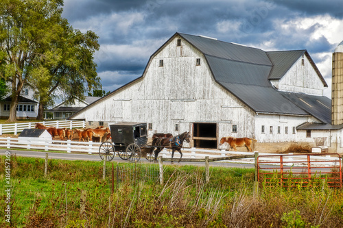Fototapeta Amish Buggy and white barn