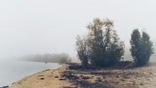 The Sandy Banks Of The Vistula...