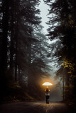 silhouette of a person walking in the forest