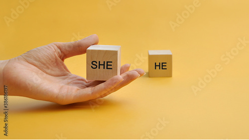 Obraz Wooden cubie with the words he and she. Gender inequality. The choice in favor of women - fototapety do salonu