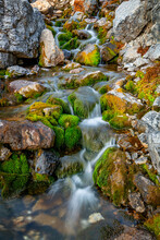 Beautiful Little Stream Forms ...