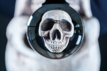 Human Skull Reflected In A Glass Reflecting Ball Or Crystal Ball As A Concept For Halloween