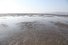 三河湾六条潟