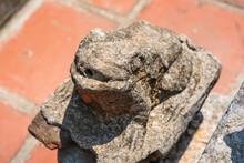 Old Stone Frog Statue In Vietn...