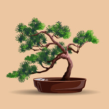 Beautiful Realistic Tree.Tree In Bonsai Style. Bonsai Tree With Deep Green Leaves On The Low Round Pot. Decorative Little Tree Vector Illustration. Nature Art