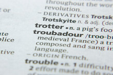 Word Or Phrase Troubadour In A Dictionary.