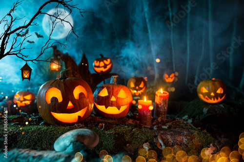 Obraz Halloween pumpkins on dark spooky forest with blue fog in background. - fototapety do salonu